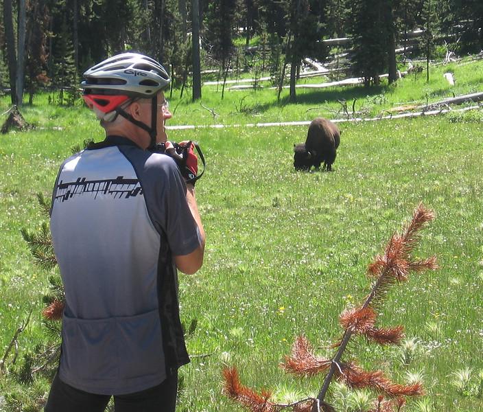 Here's Ken's first buffalo.