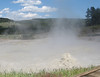 We stopped at the Mud Volcano area and walked around, looking at the bubbling, steaming, sulfurous sights.