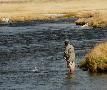 This is a full-sized crop of the fish and fisherman in the previous photo.