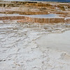Yellowstone_Sample_10_0028