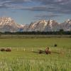 Yellowstone_Sample_10_0060