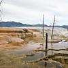 Yellowstone_Sample_10_0031