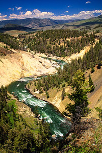 Yellowstone river snaking its way thru the Grand Canyon of Yellowstone.