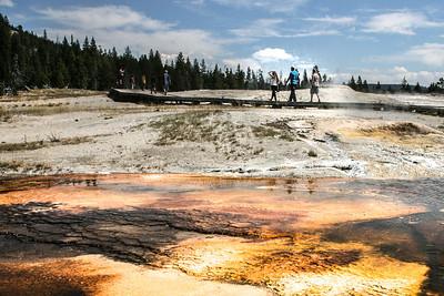 Yellowstone-8527