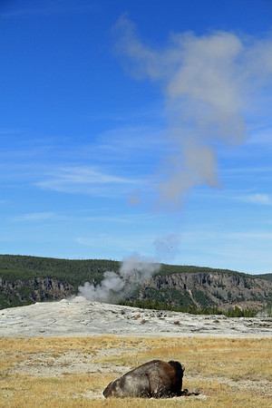A first glimpse of Old Faithful