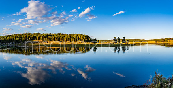 Yellowstone River reflections