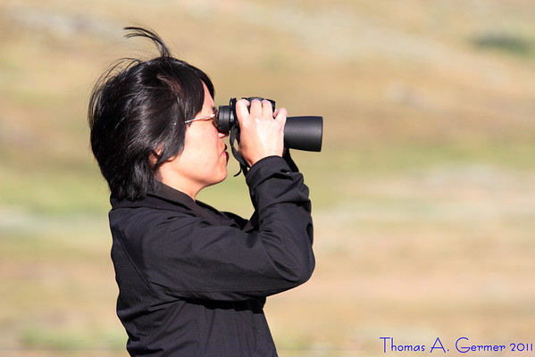 Wife watching the pronghorn.