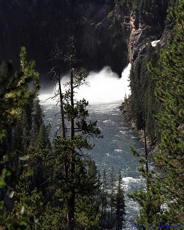 Upper Falls of the Yellowstone River.