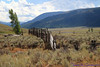 At the ranger station/Yellowstone Association in Lamar Valley.