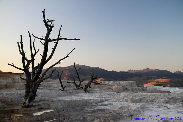 Travertine at Mammoth Hot Springs