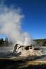 Grotto Geyser, Upper Geyser Basin, Yellowstone National Park