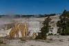 Yellowstone, Grand Tetons & Columbia Gorge-5