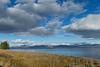 Yellowstone, Grand Tetons & Columbia Gorge-3