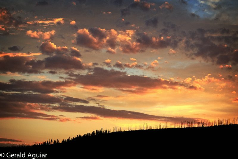 Sunset Near Canyon, Yellowstone National Park