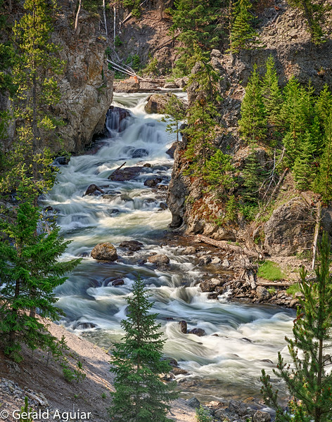 Firehole River Near Madison