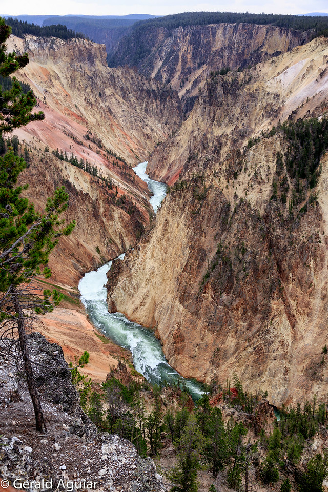 Yellowstone River and Canyon