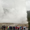 Old Faithful, erupting bigly