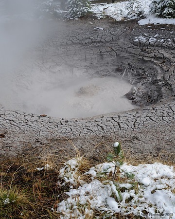 This mud pot at the West Thumb Geyser Basin was the first geothermal phenomenon that we saw on our trip.  Through the sulphur-smelling vapors you can see the boiling water.  The West Thumb is a thumb-like projection of Lake Yellowstone.