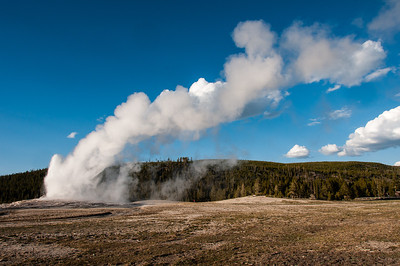 Yellowstone National Park - 05-2013