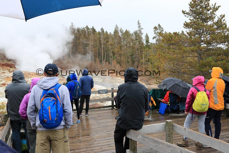 2019-09-08_288_Yellowstone_Norris Geyser Basin_Steamboat Geyser.JPG