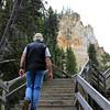 2019-09-07_209_Yellowstone_Lower Falls_Tony.JPG