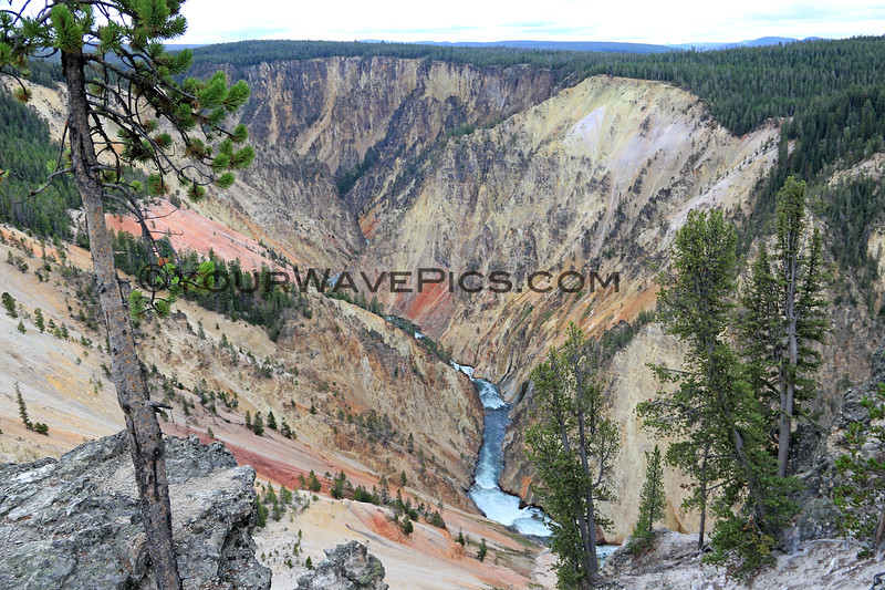 2019-09-07_216_Yellowstone_Grand Canyon_Inspiration Point.JPG