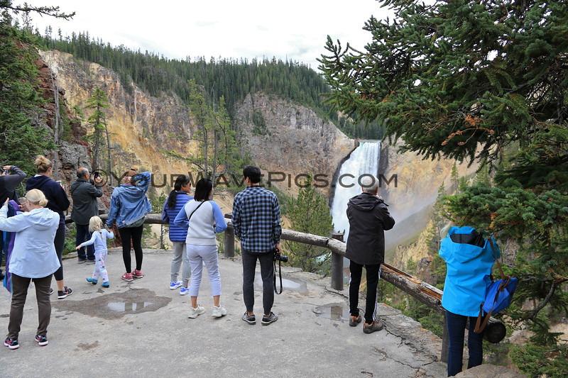 2019-09-07_208_Yellowstone_Lower Falls from Red Rock.JPG