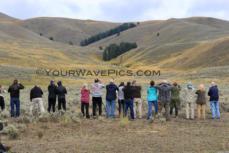 2019-09-10_364_Yellowstone_Lamar Valley_Photographers.JPG
