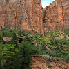 2019-09-26_1647_Utah_Zion_Lower Emerald Pools Rockslide.JPG