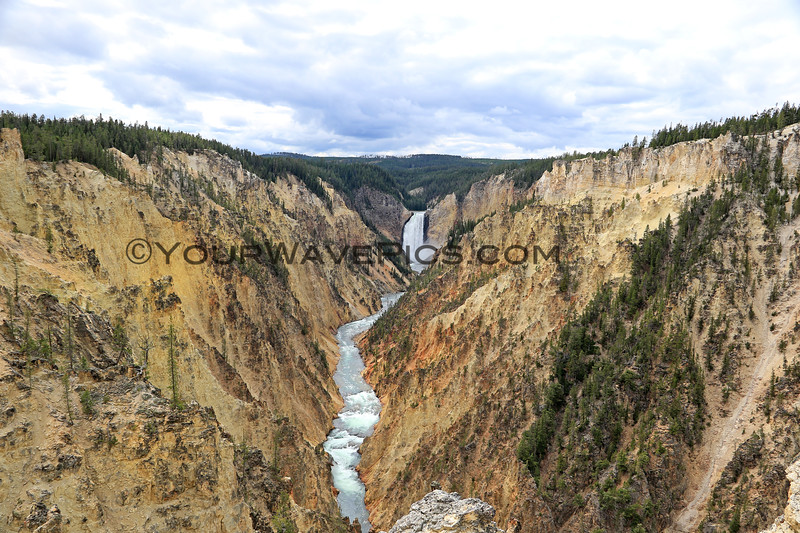 2019-09-07_222_Yellowstone_Grand Canyon_Lower Falls from Artist PointJPG.JPG