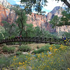 2019-09-26_1655_Utah_Zion_Lower Emerald Pools Trail.JPG