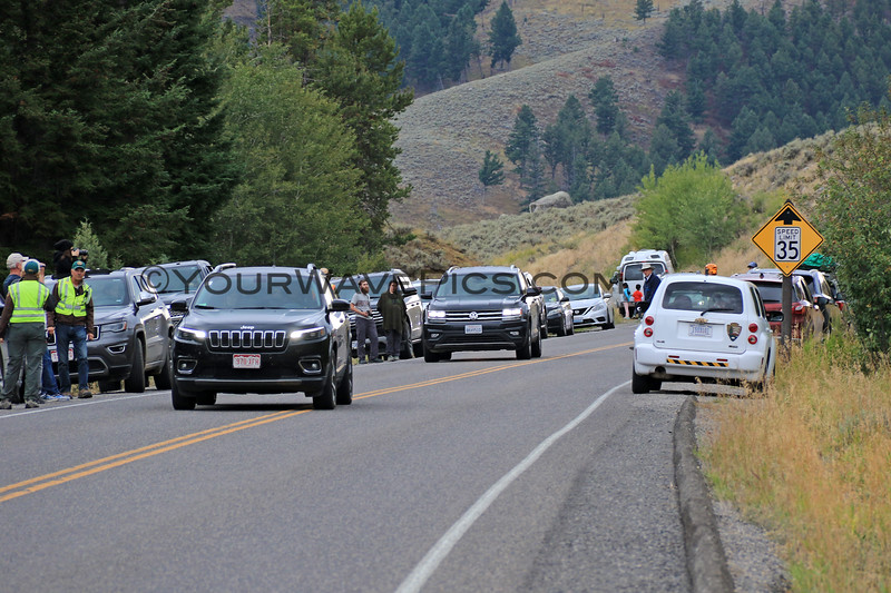 2019-09-10_428_Yellowstone_Roosevelt_Bear Jam.JPG
