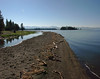 Pelican Point Trail