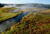 YellowstoneNP-2016-sjs-007