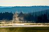 YellowstoneNP-2016-sjs-003