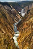YellowstoneCanyonYellowstoneNP-sjs-002