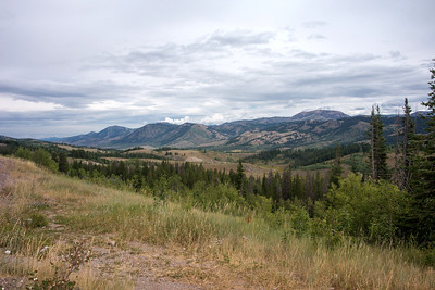 Bridger National Forest