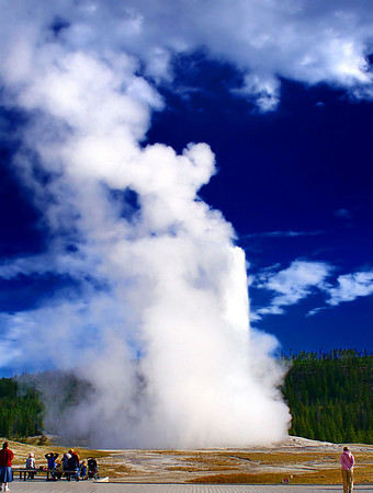 "No trip to Yellowstone is complete without taking in the magnificient eruption of ""Old Faithful"" Geyser which occurs about every 92 minutes and an average height of 130 ft."