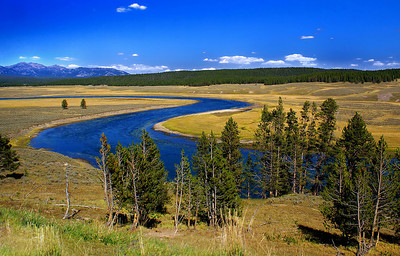 The Yellowstone River snakes through the flat landscape.