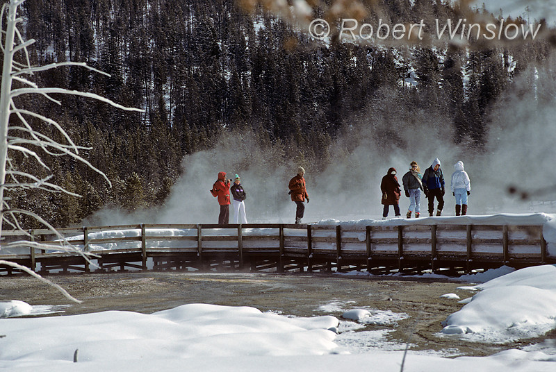 Winter, Group exploring Upper Geyser Basin, Yellowstone National Park, Wyoming, USA, North America