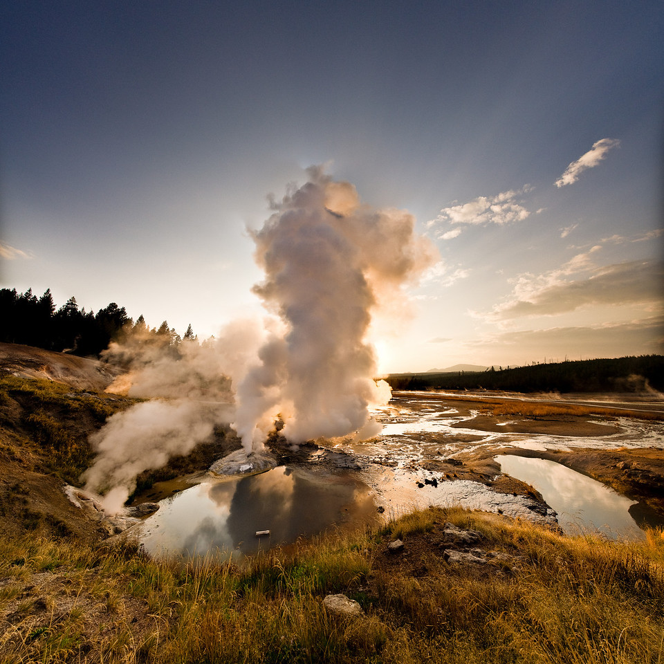 Ledge Geyser; Norris Geyser Basin @ Yellowstone National Park