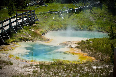 20100712_Yellowstone_2934