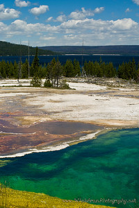 20100712_Yellowstone_2985