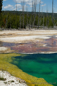 20100712_Yellowstone_2984