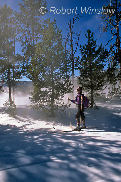Model Released, Woman, Cross-country Skiing,Fairy Falls Trail, Yellowstone National Park, Wyoming, USA, North America
