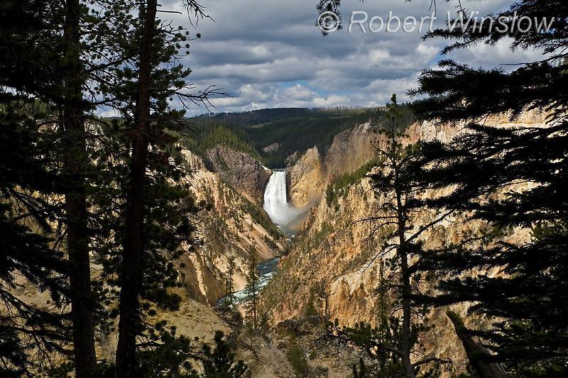 Lower Falls, Grand Canyon of the Yellowstone, Yellowstone National Park, Wyoming, USA, North America