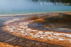 Detail, Bacteria in runoff from Hot Spring, Midway Geyser Basin, Yellowstone National Park, Wyoming, USA, North America