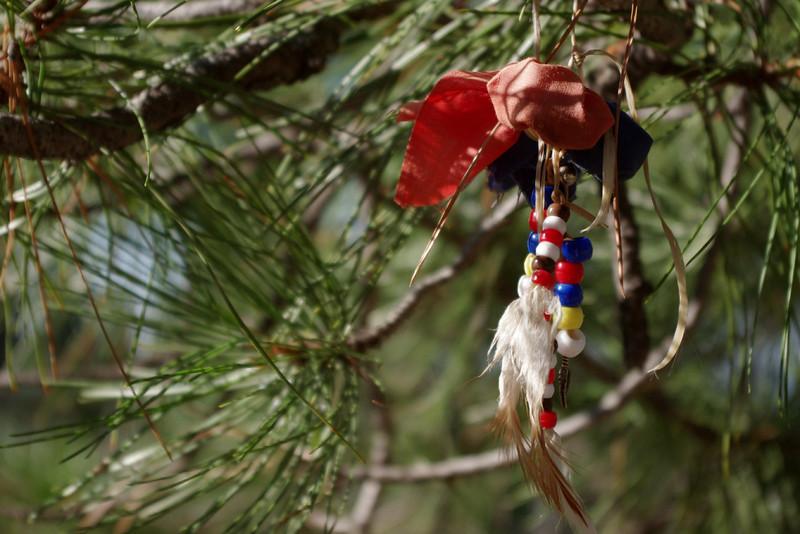 Native American prayer offerings, Devil's Tower, South Dakota.