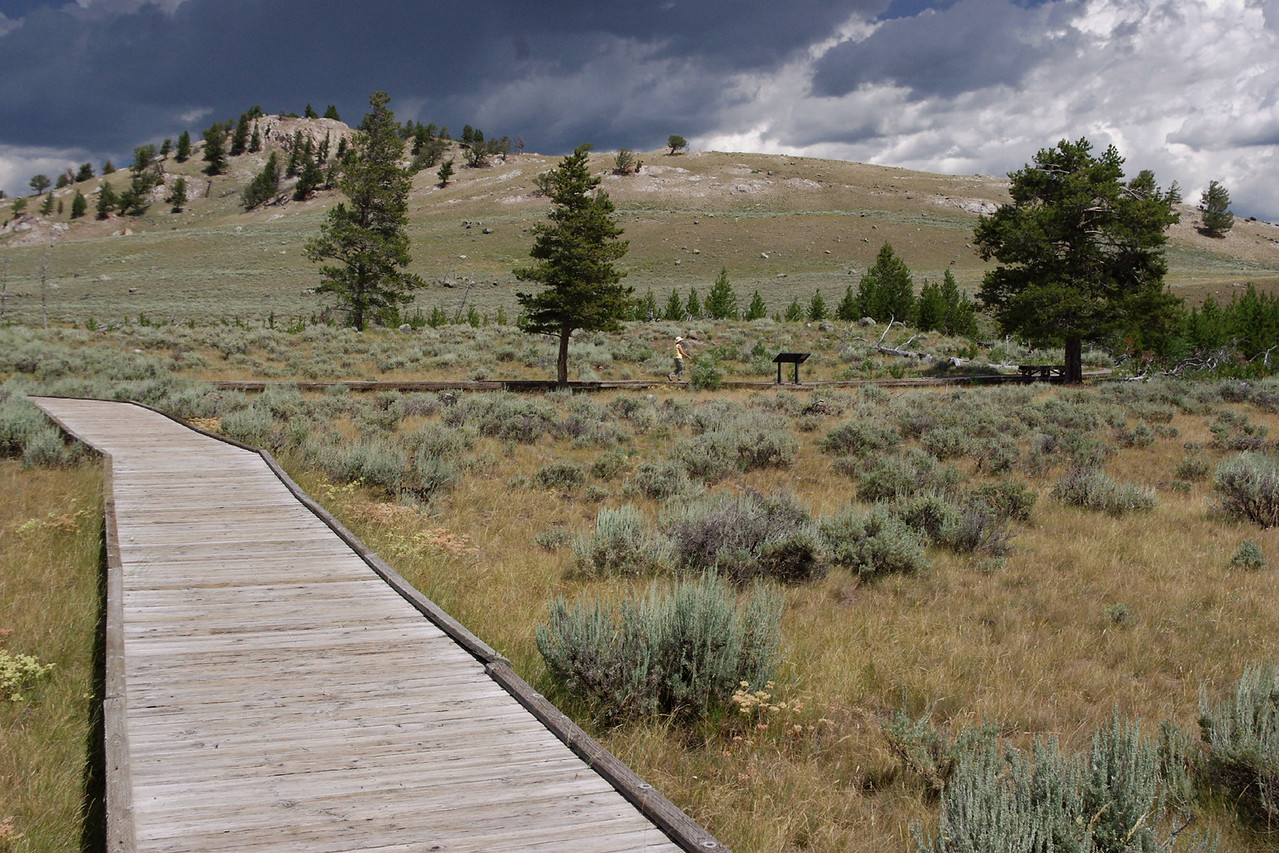 Rita walks the boardwalk at the self guided nature trail, Yellowstone National Park, while a thunderstorm is brewing.