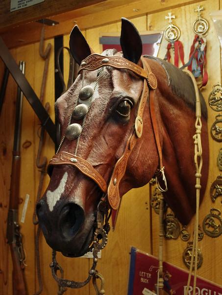 Horse display, cowboy museum Inside King's Saddlery, Sheridan, Wyoming.